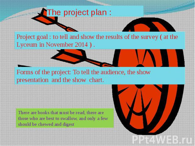 The project plan :