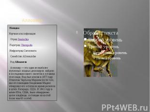 НаходкаНаучная классификацияОтряд:Saurischiaэто один из наиболее изученных