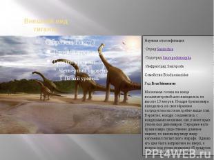 Научная классификацияОтряд:SaurischiaПодотряд:SauropodomorphaИнфраотряд:Sa