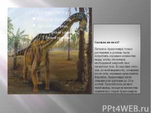Сколько же он ел?Сколько же он ел?Питались брахиозавры только растениями и должн