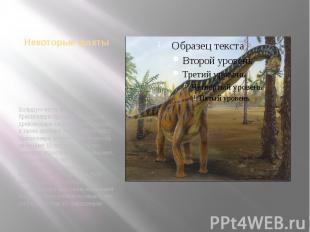 Некоторые фактыБольшую часть времени брахиозавры проводили, объедая древовидные