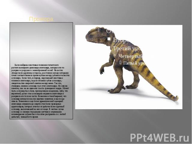 Были найдены хвостовые позвонки гигантского растительноядного динозавра апатозавра, которые кто-то разорвал и разрушил с невообразимой силой. На костях обнаружили царапины и порезы, расстояние между которыми точно соответствовало промежуткам м…
