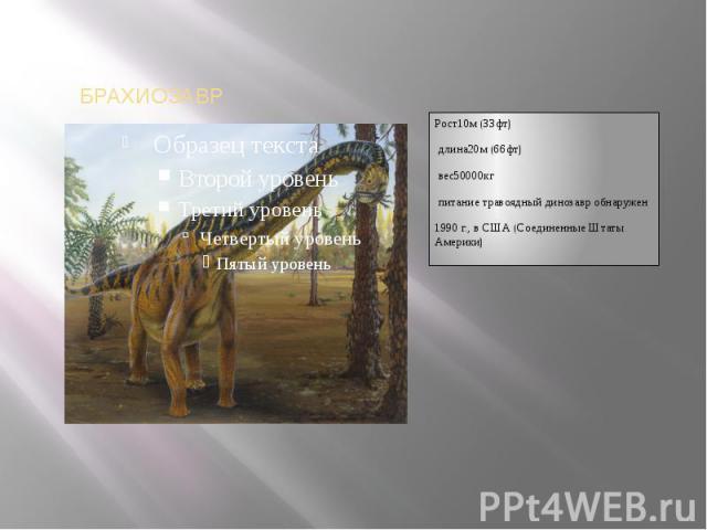 Рост10м(33фт)длина20м(66фт)вес50000кгпитание травоядный динозавробнаружен1990 г., в США (Соединенные Штаты Америки)
