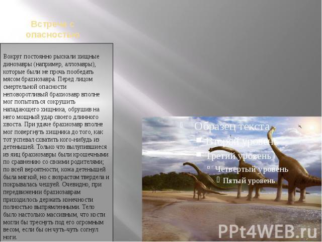 Встреча с опасностьюВокруг постоянно рыскали хищные динозавры (например, аллозавры), которые были не прочь пообедать мясом брахиозавра. Перед лицом смертельной опасности неповоротливый брахиозавр вполне мог попытаться сокрушить нападающего хищника, …