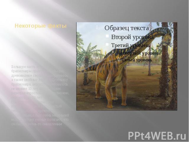 Некоторые фактыБольшую часть времени брахиозавры проводили, объедая древовидные хвощи и папоротники, а также хвойные деревья Детенышу брахиозавра, вероятно, требовалось не меннее 10 лет, чтобы достич размеров взрослой особи; возможно, они жили до 70…
