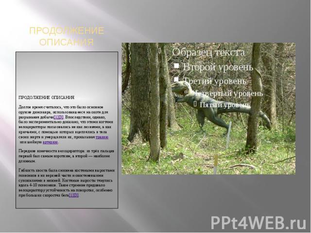 ПРОДОЛЖЕНИЕ ОПИСАНИЯПРОДОЛЖЕНИЕ ОПИСАНИЯДолгое время считалось, что это было основное оружие динозавра, использовавшееся на охоте для разрывания добычи[1][3]. Впоследствии, однако, было экспериментально доказано, что этими когтями велоцирапторы поль…