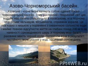 Азово-Чорноморський басейн. Азовське і чорне моря являють собою єдиний Азово-Чор