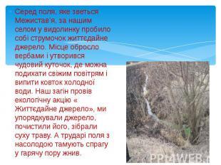 Серед поля, яке зветься Межистав'я, за нашим селом у видолинку пробило собі стру