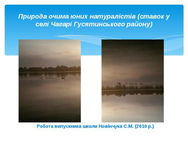 Природа очима юних натуралістів (ставок у селі Чагарі Гусятинського району)