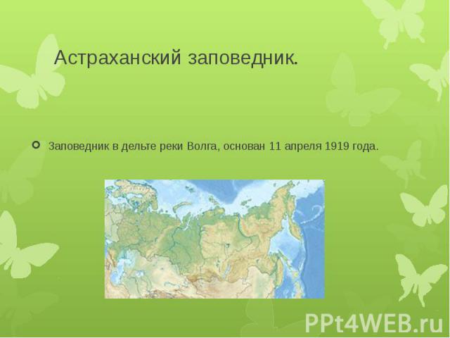 Астраханский заповедник.Заповедник в дельте реки Волга, основан 11 апреля 1919 года.