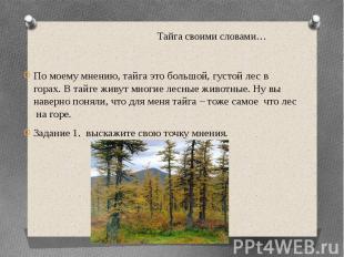 Тайга своими словами… По моему мнению, тайга это большой, густой лес в горах. В