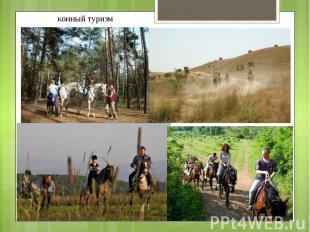 конный туризм конный туризм