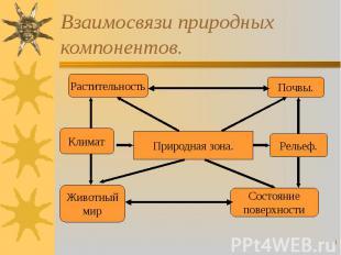 Взаимосвязи природных компонентов.