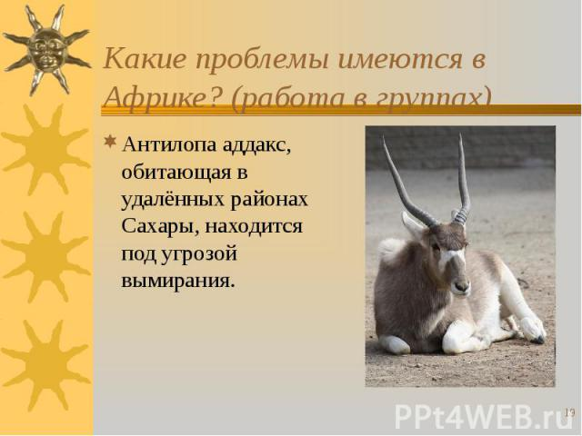 Какие проблемы имеются в Африке? (работа в группах) Антилопа аддакс, обитающая в удалённых районах Сахары, находится под угрозой вымирания.