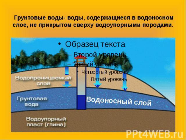 Грунтовые воды- воды, содержащиеся в водоносном слое, не прикрытом сверху водоупорными породами.