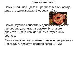 Это интересно:Самый большой цветок – раффлезия Арнольда, диаметр цветка около 1