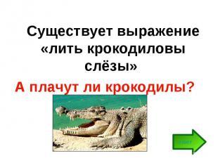 Существует выражение «лить крокодиловы слёзы» А плачут ли крокодилы?