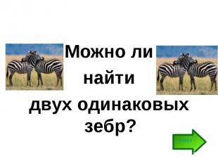 Можно ли найти двух одинаковых зебр?