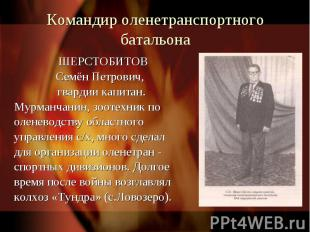 Командир оленетранспортного батальона ШЕРСТОБИТОВ Семён Петрович, гвардии капита
