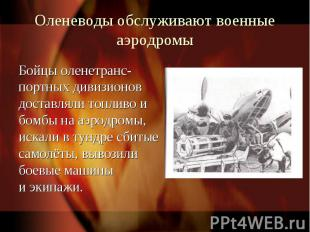 Оленеводы обслуживают военные аэродромыБойцы оленетранс-портных дивизионов доста