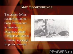 Быт фронтовиковТак жили бойцы оленетранспорт-ного батальона:в палатках, в кувакс