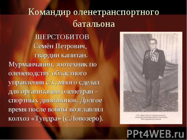 Командир оленетранспортного батальона ШЕРСТОБИТОВ Семён Петрович, гвардии капитан.Мурманчанин, зоотехник пооленеводству областного управления с/х, много сделалдля организации оленетран - спортных дивизионов. Долгое время после войны возглавлял колхо…