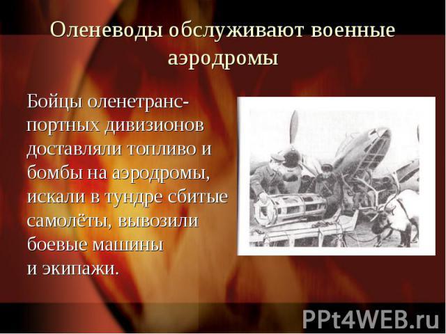 Оленеводы обслуживают военные аэродромыБойцы оленетранс-портных дивизионов доставляли топливо и бомбы на аэродромы, искали в тундре сбитые самолёты, вывозили боевые машины и экипажи.