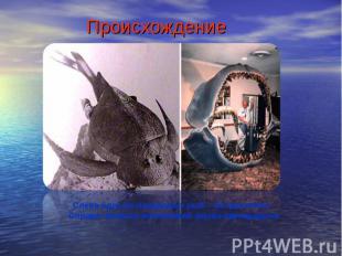 ПроисхождениеСлева одна из панцирных рыб – ботриолепис. Справа челюсти ископаемо