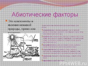 Абиотические факторыЭто компоненты и явления неживой природы, прямо или косвенн