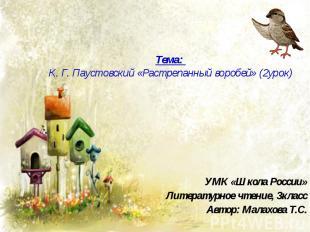 Тема: К. Г. Паустовский «Растрепанный воробей» (2урок)