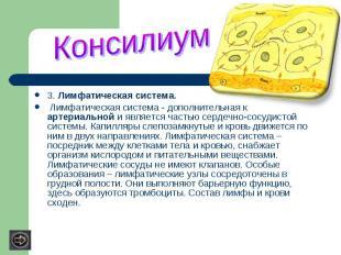 3. Лимфатическая система. Лимфатическая система - дополнительная к артериальной