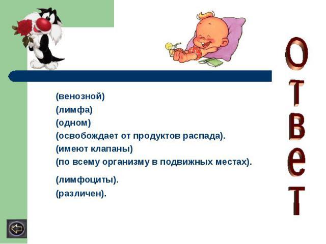 (венозной)(лимфа) (одном) (освобождает от продуктов распада). (имеют клапаны) (по всему организму в подвижных местах). (лимфоциты). (различен).
