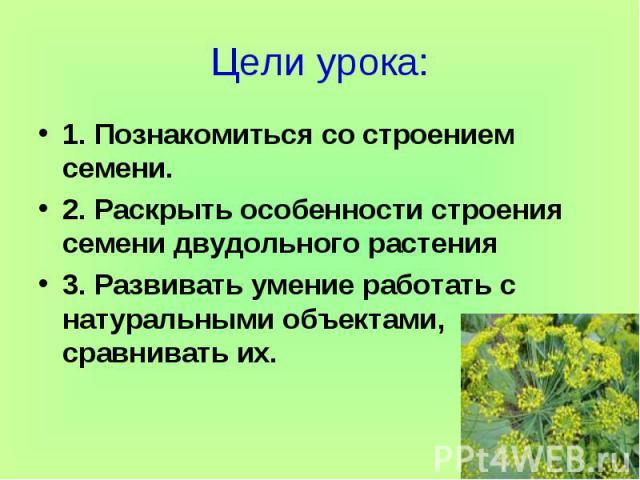 Цели урока:1. Познакомиться со строением семени.2. Раскрыть особенности строения семени двудольного растения3. Развивать умение работать с натуральными объектами, сравнивать их.