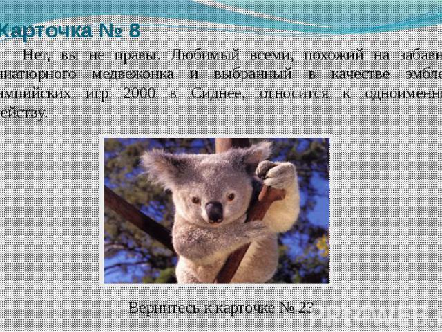 Нет, вы не правы. Любимый всеми, похожий на забавного миниатюрного медвежонка и выбранный в качестве эмблемы Олимпийских игр 2000 в Сиднее, относится к одноименному семейству. Вернитесь к карточке № 23