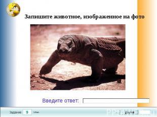 Запишите животное, изображенное на фото