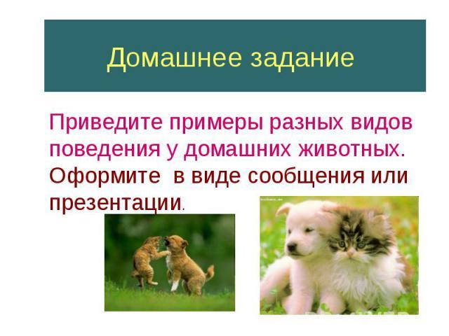 Домашнее задание Приведите примеры разных видов поведения у домашних животных.Оформите в виде сообщения или презентации.