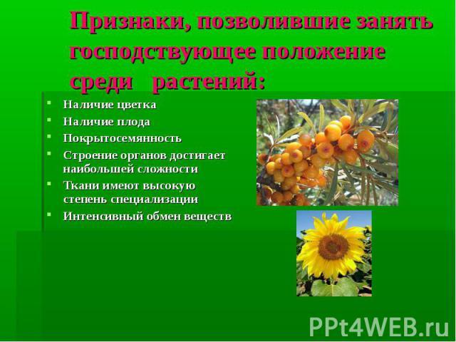 Признаки, позволившие занять господствующее положение среди растений: Наличие цветка Наличие плода Покрытосемянность Строение органов достигает наибольшей сложности Ткани имеют высокую степень специализации Интенсивный обмен веществ