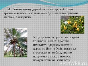 4. Саме на цьому дереві росли плоди, які Крузо зривав зеленими, оскільки вони бу
