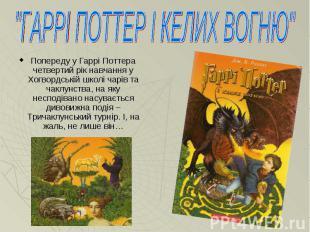 Попереду у Гаррі Поттера четвертий рік навчання у Хогвордській школі чарів та ча