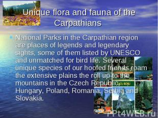 Unique flora and fauna of the Carpathians National Parks in the Carpathian regio