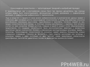 """Происхождение членистоногих — """"артроподизация"""" (вендский и кембрийский"""
