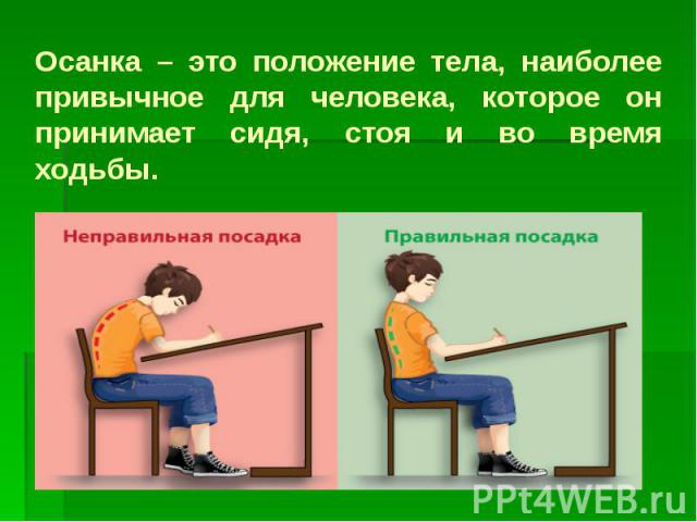 Осанка – это положение тела, наиболее привычное для человека, которое он принимает сидя, стоя и во время ходьбы.