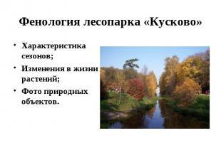 Характеристика сезонов; Характеристика сезонов; Изменения в жизни растений; Фото