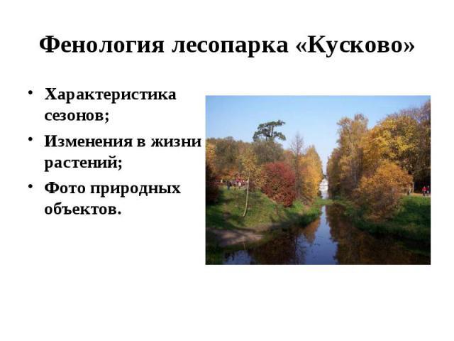 Характеристика сезонов; Характеристика сезонов; Изменения в жизни растений; Фото природных объектов.