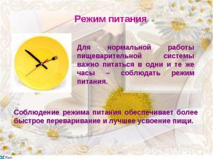 Для нормальной работы пищеварительной системы важно питаться в одни и те же часы