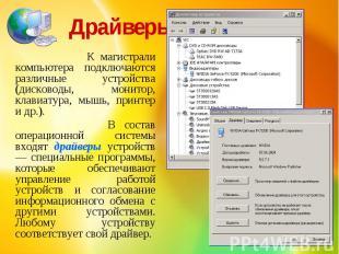Драйверы К магистрали компьютера подключаются различные устройства (дисководы, м