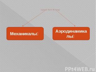 Шуыл 2 түрге бөлінеді: