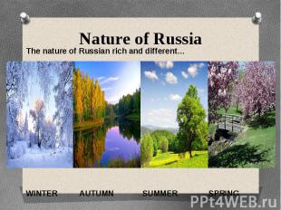 Nature of RussiaThe nature of Russian rich and different…WINTER AUTUMN SUMMER SP