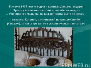 Где-то в 1935 году его друг - капитан Декстер, подарил Эрнесту необычного котенк