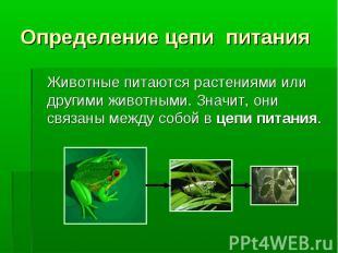 Животные питаются растениями или другими животными. Значит, они связаны между со